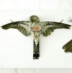 """Cuckoo Clock"" by Michael Sans (2006)"