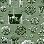 """Garden of Carbon NanoEden"" by M. de Volder, S. Tawfick, and A. John Hart; 2nd Place Winner in the Materials Research Society 2008 Fall Meeting ""Science as Art"" Competition"