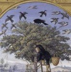 The Philosophical Tree, Plate 6 of the Splendor Solis by Salomon Trismosin (1532-1535)