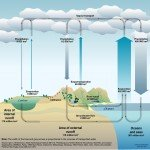 Water cycle graphic by Philippe Rekacewicz (February 2008)