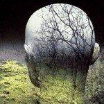 """The Ecology Man"" by Sam Haskins (Linz, Austria: Modern Times Media, 2007)"