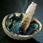 Sage smudging stick in abalone shell