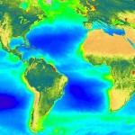 SeaWiFS Global Biosphere (September 1997 - August 1998)